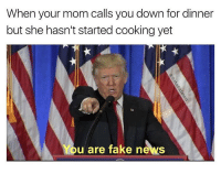 Fake, Memes, and Moms: When your mom calls you down for dinner  but she hasn't started cooking yet  You are fake news Hahahah