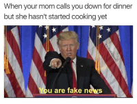 Fake, Dank Memes, and Apology: When your mom calls you down for dinner  but she hasn't started cooking yet  You are fake news Won't be able to post much this weekend, my apologies in advance