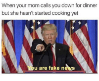 When your mom calls you down for dinner  but she hasn't started cooking yet  u are fake news Mister President? YOU ARE FAKE NEWS! ~ donaldtrump donaldtrumpmemes trumpmemes fakenews clintonnewsnetwork funny truestory funnystory unitedstates whitehouse dankmeme dankmemes weird joke hilarious meme memes memesdaily memestagram memeslayer memesfordays