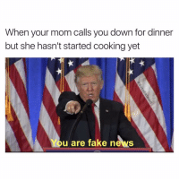 😂😂: When your mom calls you down for dinner  but she hasn't started cooking yet  You are fake news 😂😂