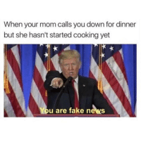 FAKE NEWS MOM!!!!!: When your mom calls you down for dinner  but she hasn't started cooking yet  You are fake news FAKE NEWS MOM!!!!!