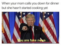 Fake news 😂🇺🇸 https://t.co/c5KKgH6Th6: When your mom calls you down for dinner  but she hasn't started cooking yet  You are fake news Fake news 😂🇺🇸 https://t.co/c5KKgH6Th6