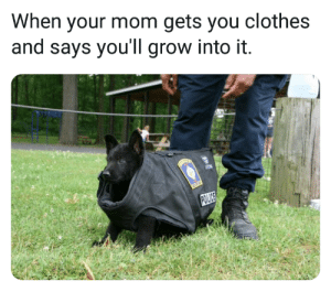 Thanks mom, very cool by Borkin_Bandit MORE MEMES: When your mom gets you clothes  and says you'll grow into it. Thanks mom, very cool by Borkin_Bandit MORE MEMES