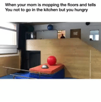 Funny, Hungry, and Dank Memes: When your mom is mopping the floors and tells  You not to go in the kitchen but you hungry @funny is an absolute must follow