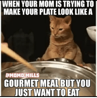 cat cats food life eat funny laugh realshit kitty friends guys dog girls love life thetruth pose nickiminaj selfie selfienation beyonce me funny swag funnyvideos style jokes memes follow like: WHEN YOUR MOM IS TRYING TO  MAKE YOUR PLATE LOOK LIKE A  BMOMD MILLS  GOURMET MEAL BUT YOU  JUST WANT TO EAT cat cats food life eat funny laugh realshit kitty friends guys dog girls love life thetruth pose nickiminaj selfie selfienation beyonce me funny swag funnyvideos style jokes memes follow like