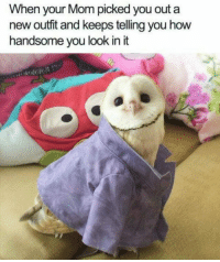 Wholesome, Irl, and Me IRL: When your Mom picked you out a  new outfit and keeps telling you how  handsome vou look in it <p>This was too wholesome for me_irl</p>