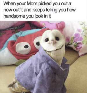 Mom, How, and New: When your Mom picked you out a  new outfit and keeps telling you how  handsome you look in it