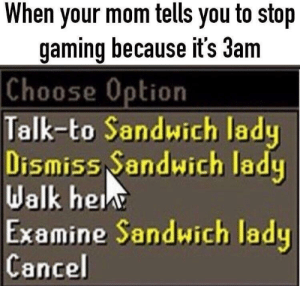 Dank, Memes, and Target: When your mom tells you to stop  gaming because it's 3am  Choose  Option  Talk-to Sandwich lady  Dismiss Sandwich lady  Walk he  Examine Sandwich lady  Cancel Goodbye by bigmoist-ChrisHansen MORE MEMES