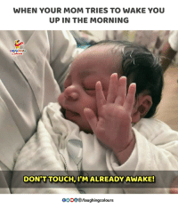 Indianpeoplefacebook, Mom, and Touch: WHEN YOUR MOM TRIES TO WAKE YOU  UP IN THE MORNING  LAUGHING  DON'T TOUCH, I'M ALREADY AWAKE!  Blaughingcolours