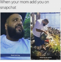 Lol, Memes, and Snapchat: When your mom you on  on  snapchat  mom Good morning  Watering my plants Gotta keep it clean 😂😂😂😂😂😂😂😂 trapvine lol tagafriend