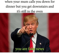 Fake, News, and Down: when your mum calls you down for  dinner but you get downstairs and  it's still in the oven  vou are fake news