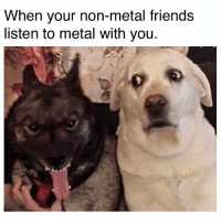 Friends, Humans of Tumblr, and Metal: When your non-metal friends  listen to metal with you