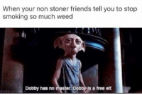 Dobby Has No Master: When your non stoner friends tell you to stop  smoking so much weed  Dobby has no master. Dob  s a free elf