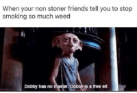 Elf, Memes, and Smoking: When your non stoner friends tell you to stop  smoking so much weed  Dobby has no master. Dob  s a free elf
