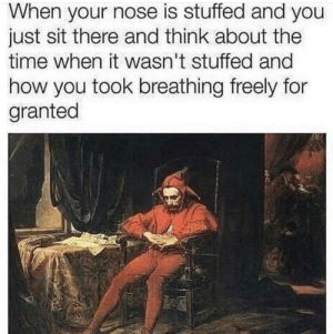 Dank, Memes, and Target: When your nose is stuffed and you  just sit there and think about the  time when it wasn't stuffed and  how you took breathing freely for  granted meirl by SaltedPineapple MORE MEMES