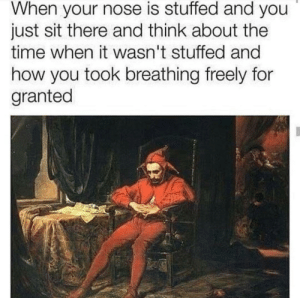 Dank, Memes, and Reddit: When your nose is stuffed and you  just sit there and think about the  time when it wasn't stuffed and  how you took breathing freely for  granted An interesting title by Enraged-Muffin FOLLOW 4 MORE MEMES.