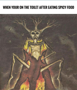 to spiceE by dafuuux FOLLOW 4 MORE MEMES.: WHEN YOUR ON THE TOILET AFTER EATING SPICY FOOD to spiceE by dafuuux FOLLOW 4 MORE MEMES.