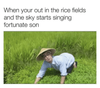 Brings back memories: When your out in the rice fields  and the sky starts singing  fortunate son Brings back memories