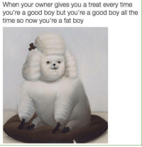 fat boys: When your owner gives you a treat every time  you're a good boy but you're a good boy al the  time so now you're a fat boy
