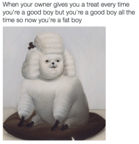 fat boys: When your owner gives you a treat every time  you're a good boy but you're a good boy all the  time so now you're a fat boy