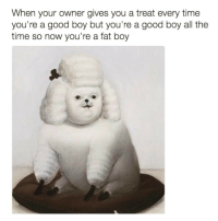 Well shit😳 sundayfatday Via @bitc.h: When your owner gives you a treat every time  you're a good boy but you're a good boy all the  time so now you're a fat boy Well shit😳 sundayfatday Via @bitc.h