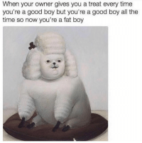 Good god if this isn't me. Via @beigecardigan: When your owner gives you a treat every time  you're a good boy but you're a good boy all the  time so now you're a fat boy Good god if this isn't me. Via @beigecardigan