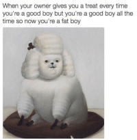 <p>I love this good fat boy.</p>: When your owner gives you a treat every time  you're a good boy but you're a good boy all the  time so now you're a fat boy <p>I love this good fat boy.</p>