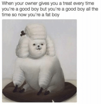 55 FRESH MEMES FOR TODAY #679: When your owner gives you a treat every time  you're a good boy but you're a good boy all the  time so now you're a fat boy 55 FRESH MEMES FOR TODAY #679