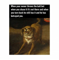 Chase, Classical Art, and Back: When your owner throws the ball but  when you chase it it's not there and when  you turn back he still has it and he has  betrayed you. How dare you