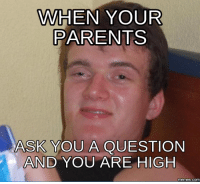 Question Meme: WHEN YOUR  PARENTS  ASK YOU A QUESTION  AND YOU ARE HIGH  memes. Com