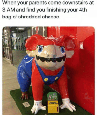 Funny, Parents, and Cheese: When your parents come downstairs at  3 AM and find you finishing your 4th  bag of shredded cheese Funny Picture Gallery That Will Make You Laugh - 18
