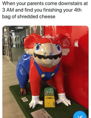 meirl by despisesunrise MORE MEMES: When your parents come downstairs at  3 AM and find you finishing your 4th  bag of shredded cheese meirl by despisesunrise MORE MEMES