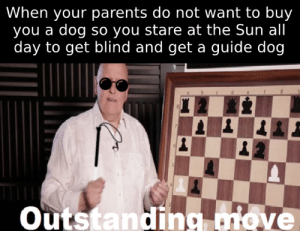 Dank, Memes, and Parents: When your parents do not want to buy  you a dog so you stare at the Sun all  day to get blind and get a guide dog  outstanding dlove I could do a lot for a dog by VangeeOP MORE MEMES