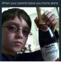 The right way to party 😂: When your parents leave you home alone  mormon,dude  Welchs  RED GRAPE The right way to party 😂
