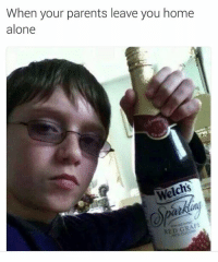 Memes, 🤖, and Red: When your parents leave you home  alone  Welchs  RED GRAPE
