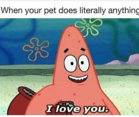Funny, Lol, and Love: When your pet does literally anything  I love you Lol 💕💕💕