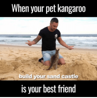 Best Friend, Dank, and Friends: When your pet kangaroo  build your sand castle  is your best friend I'm so jealous of this friendship 😂😂🙌  by Jackson ODoherty