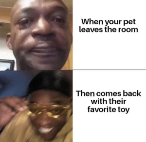 It be like that sometimes: When your pet  leaves the room  Then comes back  with their  favorite toy It be like that sometimes