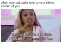Bitch, Blackpeopletwitter, and Fake: when your pet walks over to your sibling  instead of you  i thought it was one fake  bitch in this house, itts two  0  0 <p>Fuck a fake friend (via /r/BlackPeopleTwitter)</p>