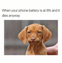 Shucks: When your phone battery is at 6% and it  dies anyway Shucks