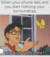 "<p>Can relate via /r/memes <a href=""http://ift.tt/2DOZNbA"">http://ift.tt/2DOZNbA</a></p>: When your phone dies and  you start noticing your  surroundings  what kind of bird is this <p>Can relate via /r/memes <a href=""http://ift.tt/2DOZNbA"">http://ift.tt/2DOZNbA</a></p>"