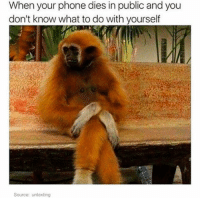 Relatable, Sourcing, and Idk: When your phone dies in public and you  don't know what to do with yourself  Source: untexting idk what to do with my hands