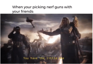 Friends, Guns, and Reddit: When your picking nerf guns with  your friends:  You have the little one it's nerf or nothing