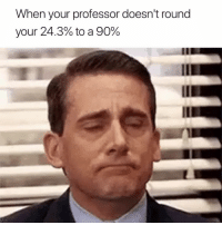 Professor, When, and When Your: When your professor doesn't round  your 24.3% to a 90% 😢
