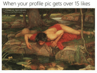 profile pic: When your profile pic gets over 15 likes  LASSICAL ART MEMES  ssicalartmemes