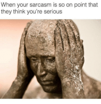 Memes, Good, and Sarcasm: When your sarcasm is so on point that  they think you're serious This isn't good