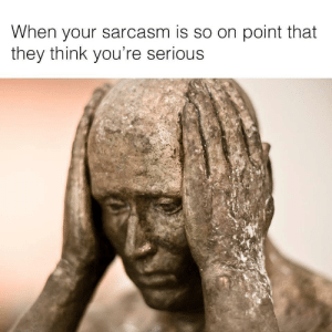 When you are always sarcastic this is the very real risk by Kriskross88 FOLLOW HERE 4 MORE MEMES.: When your sarcasm is so on point that  they think you're serious When you are always sarcastic this is the very real risk by Kriskross88 FOLLOW HERE 4 MORE MEMES.