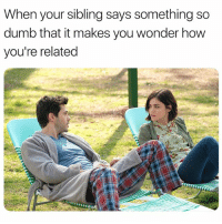 Dumb, Tool, and Girl Memes: When your sibling says something so  dumb that it makes you wonder how  you're related Not the sharpest tool in the shed. New episodes of @cw_lifesentence Wednesdays! @thecw lifesentence ad