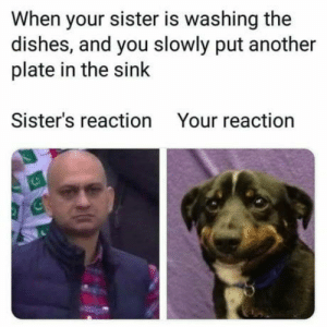 'Please?…' by Unicornglitteryblood MORE MEMES: When your sister is washing the  dishes, and you slowly put another  plate in the sink  Sister's reaction  Your reaction 'Please?…' by Unicornglitteryblood MORE MEMES