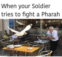 Pharah: When your Soldier  tries to fight a Pharah